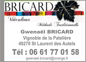 Bricard copie